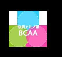 必須アミノ酸BCAA